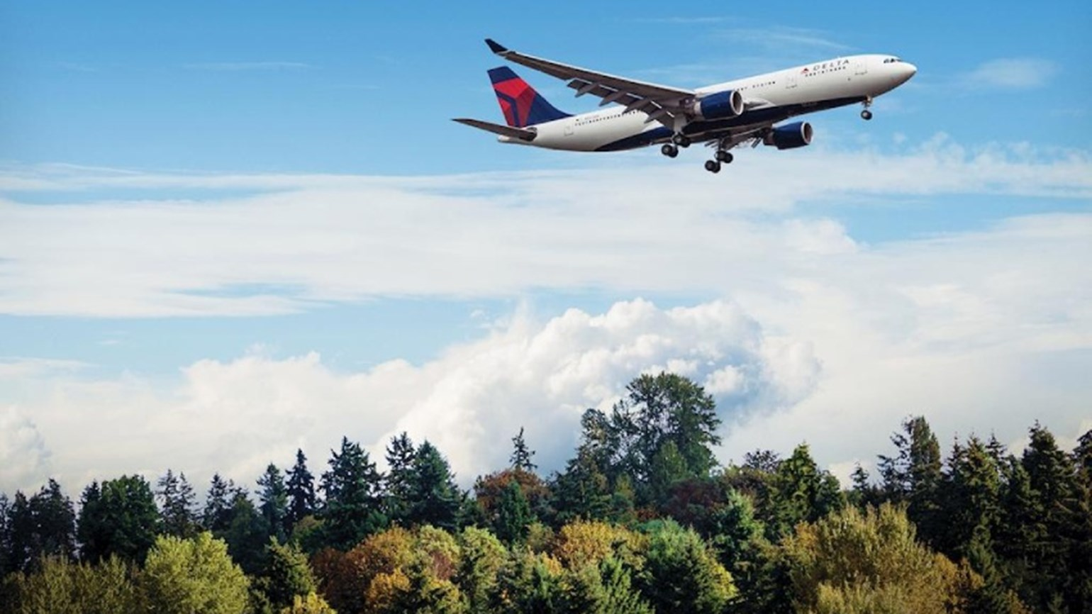 A Delta aircraft flying over trees